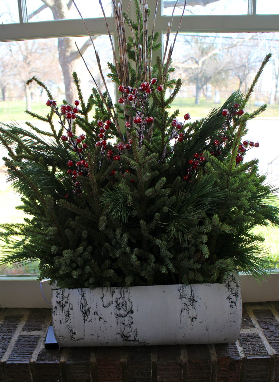 metal birchbark planter Bachman's
