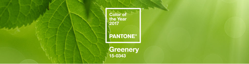 Pantone 2017 Color Of The Year Greenery Hirshfield S,Best Places To Travel In California In November