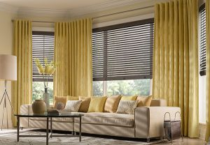 Cellular and pleated shades room image