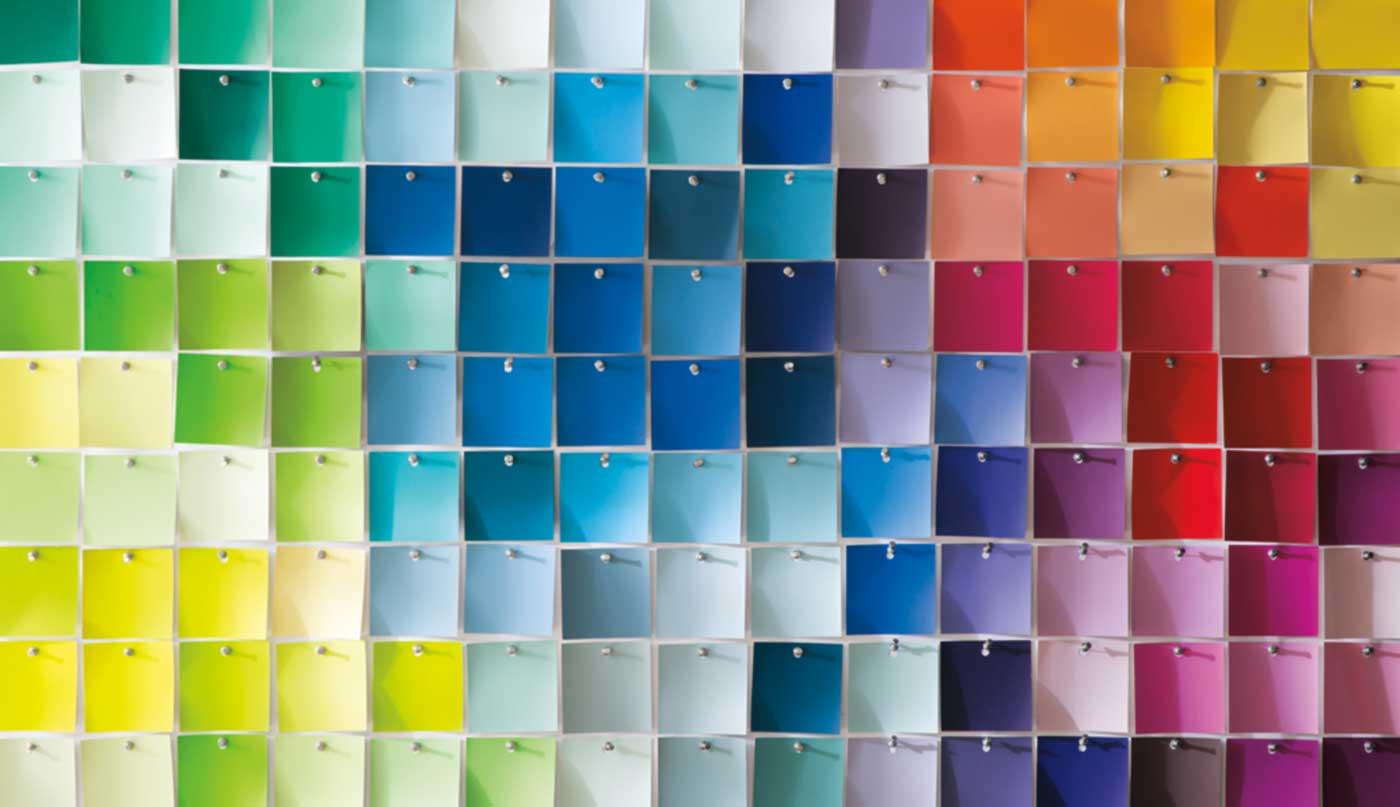 closeup chip boards vibrant colours benjamin moore