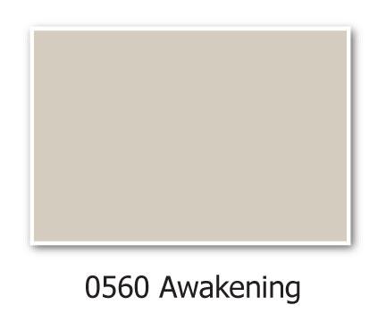 0560-Awakening