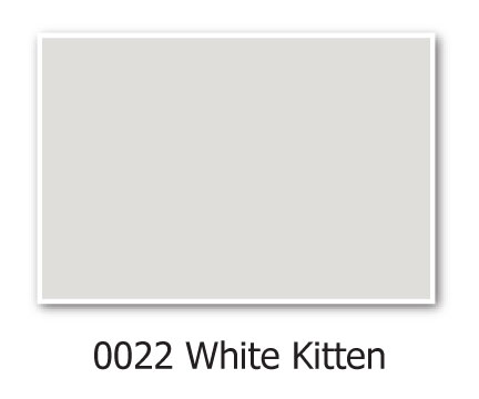 Hirshfields-0022-White-Kitten