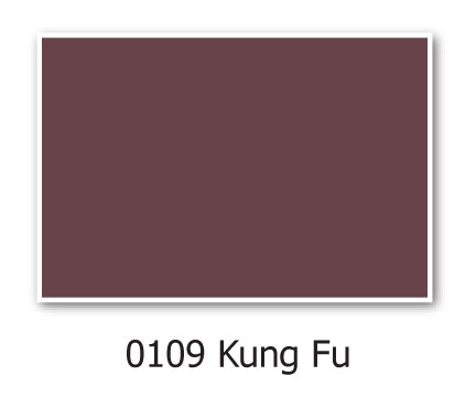 0109 kung fu