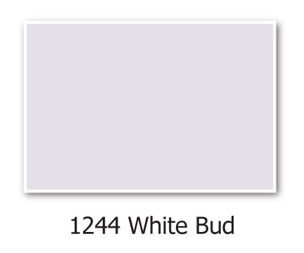 hirshfields-1244-White-Bud