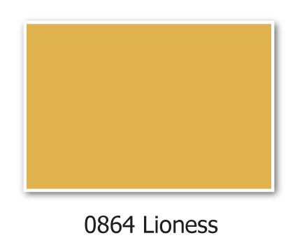 0864-Lioness