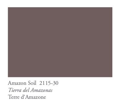 COTY2021_Amazon Soil