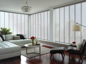 skyline window treatment