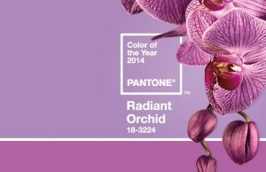 orchid color of the year 2014